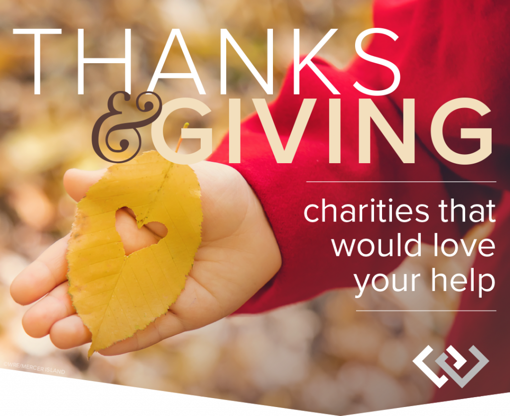 Thanks & Giving: Charities That Would Love Your Help